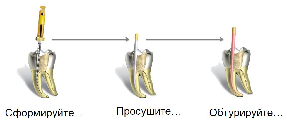 стоматология новый уренгой